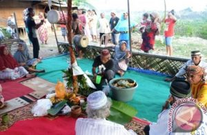 Info budaya Upacara adat Pompaura (Image antaranewcom)