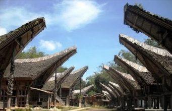 Info Budaya Rumah Tongkonan dan Alang di Kete Kesu