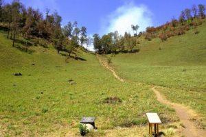 wisaya-alam-tanjakan cinta gunung-semeru