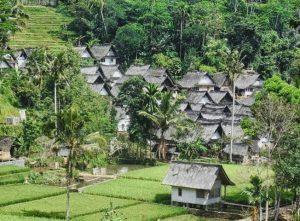 Info Budaya Desa adat jadi destinasi wisata Desa Adat Kampung Tarung (Image travelingyuk com)