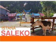 Info Budaya Istana Saleko