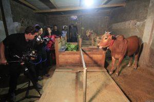 "Sutradara Livi Zheng dan kru saat syuting film ""The Bull Race"" di Indonesia (Dok: Livi Zheng) (Image voaindonesia com)"