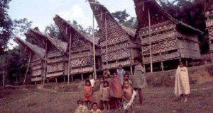 info budaya indonesia Aluk Todolo (Image : makassar tribunnews com)