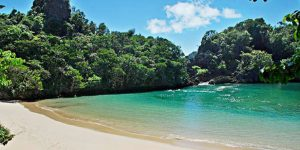 wisata jawa timur pulau sempu (Image : kemanaajaboleeh com)