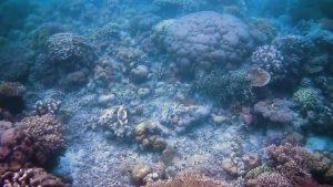 wisata indonesia di wisata bahari takabonerate (Image : Capture Youtube)